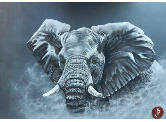 Éléphant dans la brume