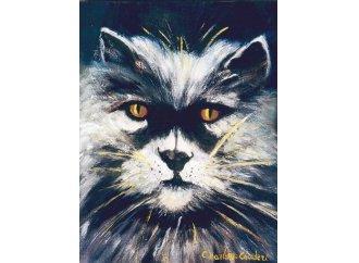 Le Chat-tigre