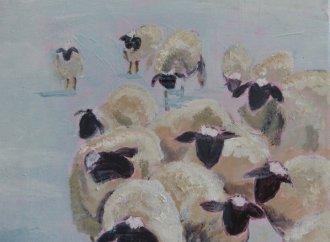 Moutons surpris par la neige